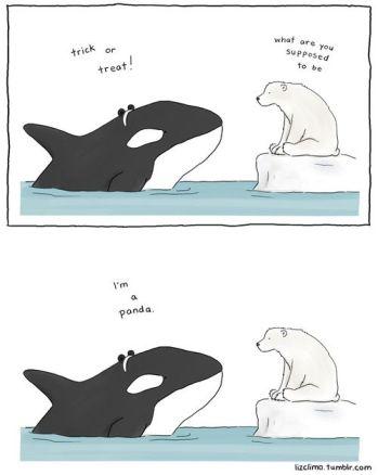 Whale TrT
