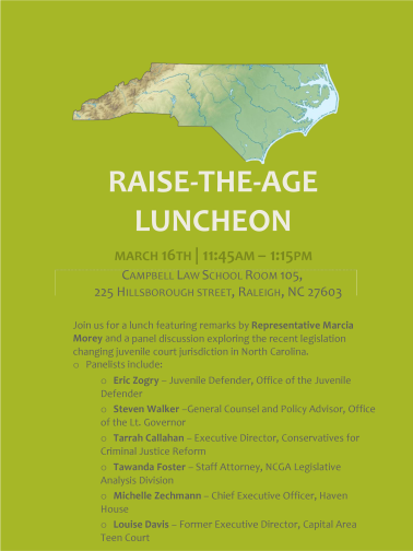 raise the age luncheon
